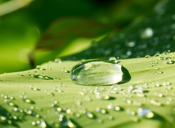 Traitement de l'humidité : Société Humihouse